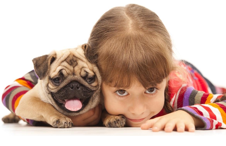 Petland Joplin Pet Services